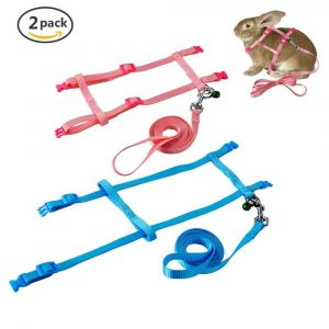 PerSuper – 2 Pack Pet Harness Leash