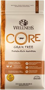 Wellness Core Dry Cat Food